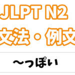【JLPT N2】文法・例文:〜っぽい