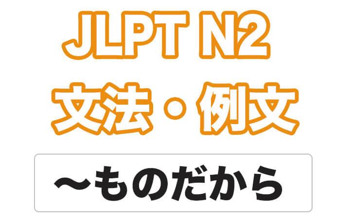 【JLPT N2】文法・例文:〜ものだから