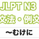 【JLPT N3】文法・例文:〜むけに