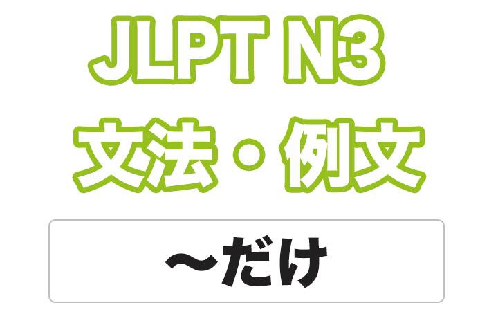 日本語文型:〜だけ