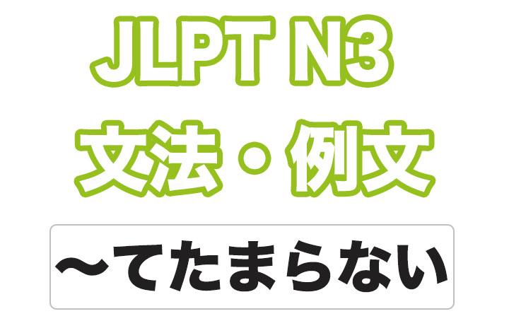 日本語文型:〜てたまらない