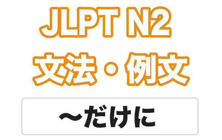 日本語文型:〜だけに