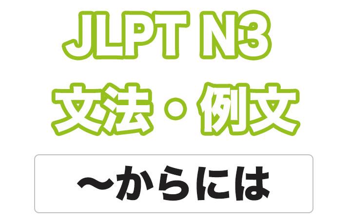 日本語文型:〜からには