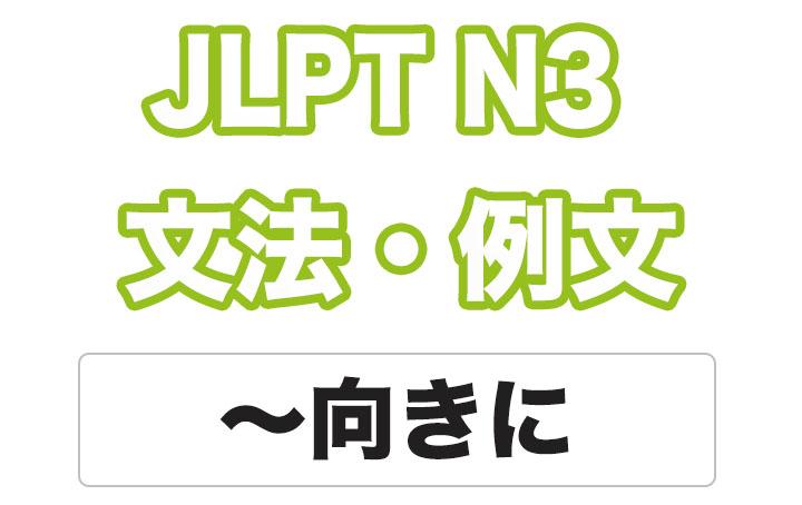 【JLPT N3】文法・例文:〜むきに