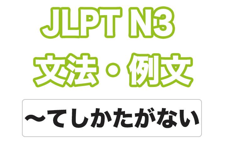 日本語文型:〜てしかたがない