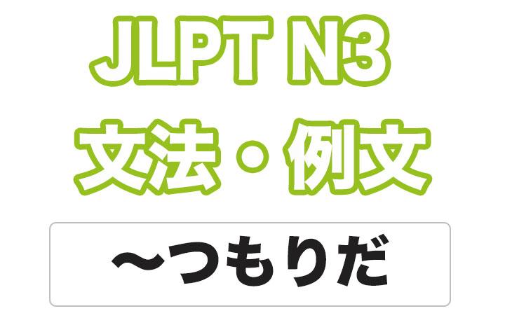 【JLPT N3】文法・例文:〜つもりだ(実際とは異なる)