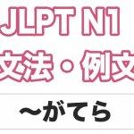 【JLPT N1】文法・例文:〜がてら