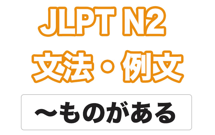 【JLPT N2】文法・例文:〜ものがある