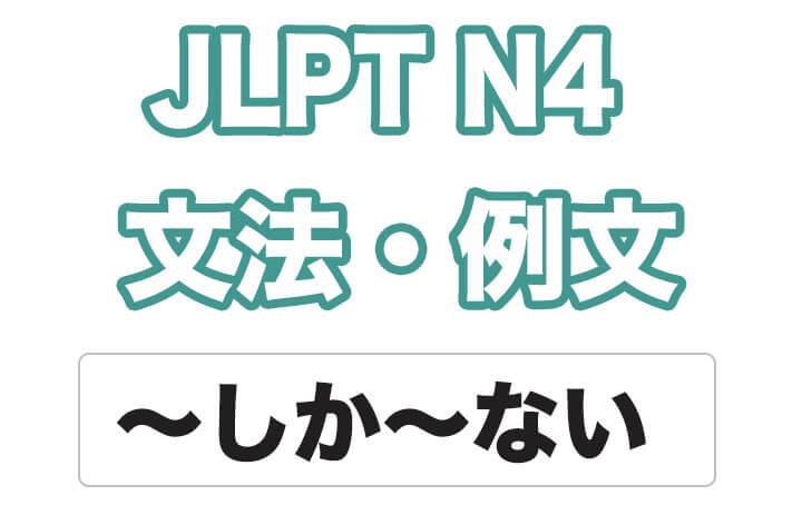 【JLPT N4】文法・例文:〜しか〜ない
