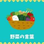 【日本語語彙】野菜の言葉リスト