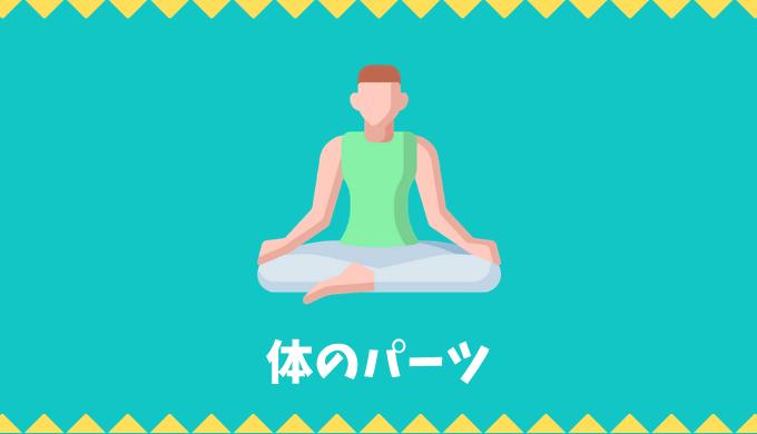 【日本語語彙】体のパーツの言葉リスト