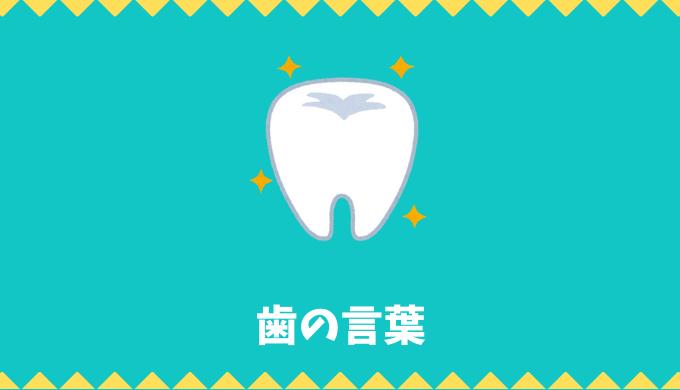 【日本語語彙】「歯」の言葉リスト