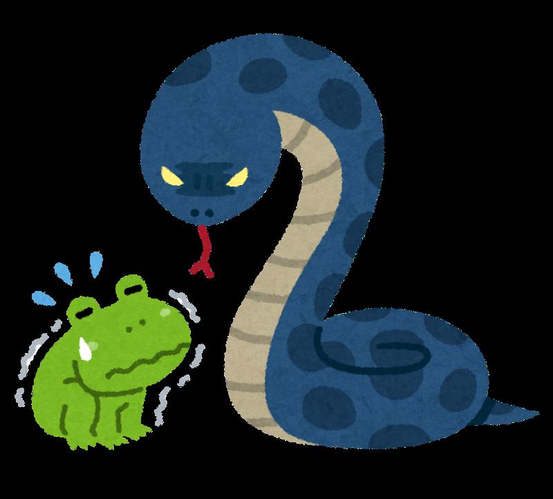 【故事・ことわざ】蛇に見込まれた蛙(へびにみこまれたかえる)