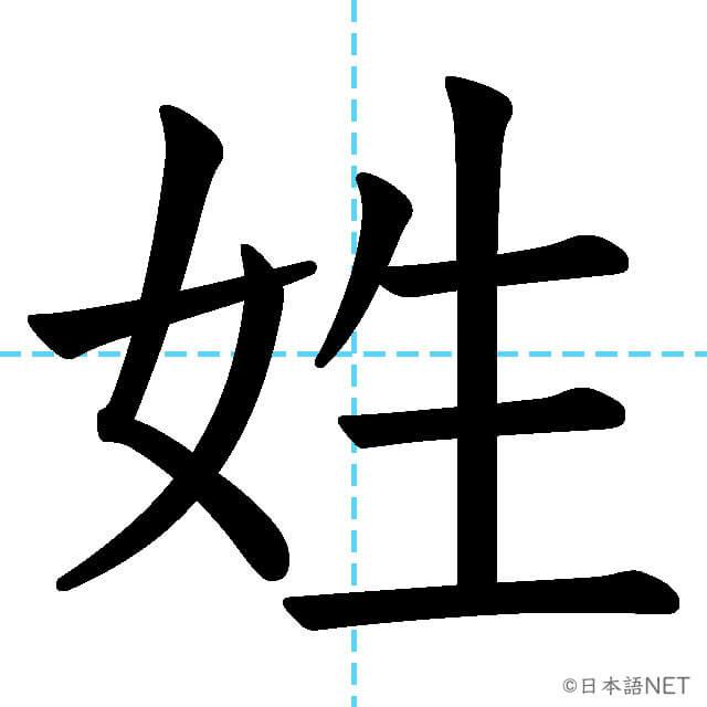 【JLPT N2漢字】「姓」の意味・読み方・書き順