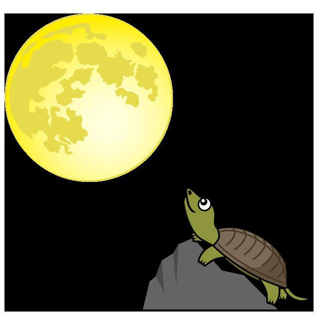 【故事・ことわざ】月とすっぽん