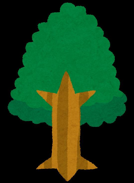 【故事・ことわざ】独活の大木(うどのたいぼく)