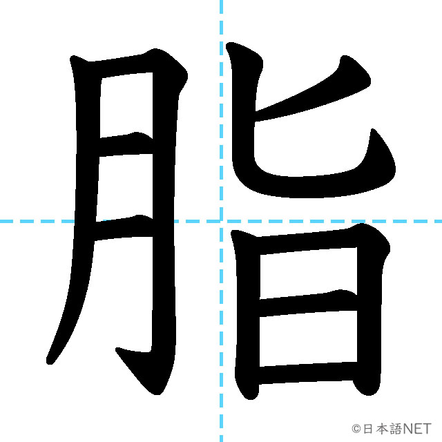 【JLPT N2漢字】「脂」の意味・読み方・書き順