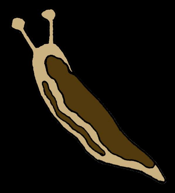 【オノマトペ】ぬめぬめの意味と例文