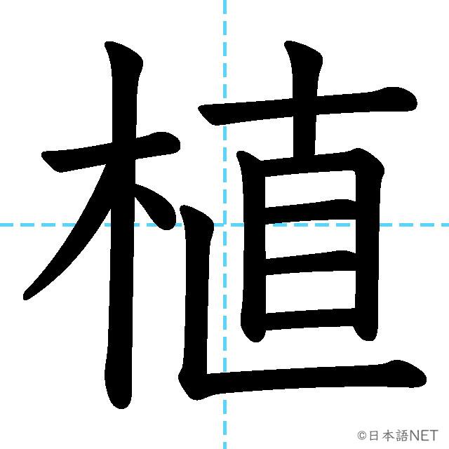 【JLPT N2漢字】「植」の意味・読み方・書き順