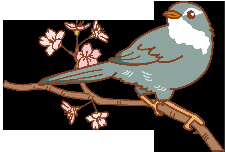 【オノマトペ】ホーホケキョの意味と例文