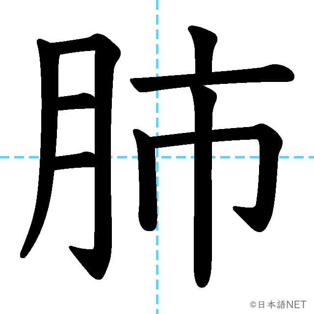 【JLPT N1漢字】「肺」の意味・読み方・書き順