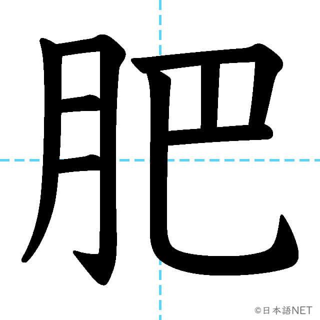 【JLPT N1漢字】「肥」の意味・読み方・書き順